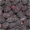 Black Raspberry Candle Fragrance Oil