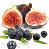 Burnt Fig and Cassis Candle Fragrance Oil