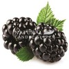 Blackberry Crush Candle Fragrance Oil