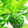 Amazon Sugar Apple Candle Fragrance Oil