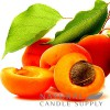 Apricot Candle Fragrance Oil