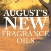 August (9) Candle Fragrance Oil Set